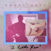 A Little Rain by Profligate