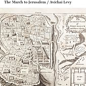The March to Jerusalem by Avichai Levy
