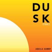 Dusk Stroll by Aquila Sammy