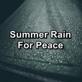 Summer Rain For Peace by ASMR Rain Sounds