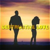 Destructive Love de Various Artists