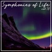 Symphonies of Life, Vol. 78 - Bach: Musik Der Bach Familie de Barbara Schlick