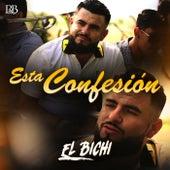 Esta Confesión de Bichi