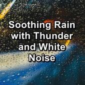 Soothing Rain with Thunder and White Noise de Deep Sleep Meditation