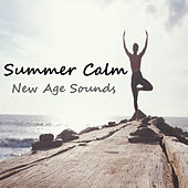 Summer Calm New Age Sounds by Various Artists