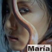 María de Hwa Sa