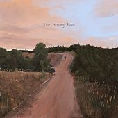 The Missing Road by Radical Face