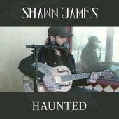 Haunted (Acoustic) de Shawn James