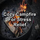 Cozy Campfire For Stress Relief van Nature Sounds (1)