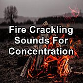 Fire Crackling Sounds For Concentration by Christmas Songs