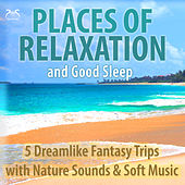 Places of Relaxation and Good Sleep - 5 Dreamlike Fantasy Trips with Nature Sounds & Soft Music von Colin Griffiths-Brown