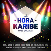 La Hora Karibe Mix Bailables Conga / Cachita / El Africano / Hay Que Venir Al Sur/ Explota, Explota / Fiesta / Levantando Las Manos De Reversa / Caribe / La Vida Es Un Carnaval de Karibe Orquesta
