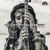 Following the Eastern Spirit: Get Inspired, Meditate, Discover de Mindfullness Meditation World