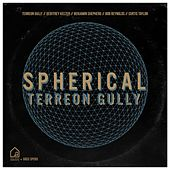 Spherical (Tiny Room Sessions) by Greg Spero