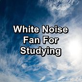 White Noise Fan For Studying by Brown Noise