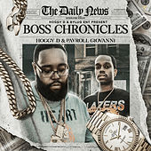 Boss Chronicles by Hoggy D