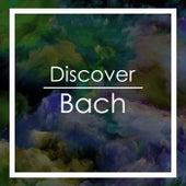 Discover Bach von Johann Sebastian Bach