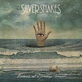 Pictures of a Floating World de Silver Snakes