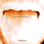 Techno Parade #13 by Various Artists