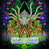 Drop Your Fears by Nanuk Aum Project