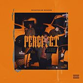 PERCFECT by 24hrs