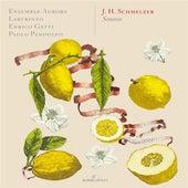 Schmelzer: Sonatas de Paolo Pandolfo