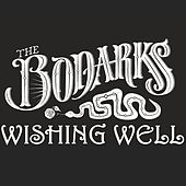 Wishing Well by The Bodarks