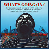 What's Going On by The Terri Green Project
