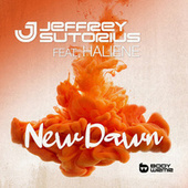New Dawn de Dash Berlin