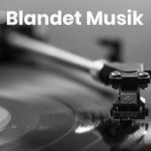 Blandet Musik - Blandet danske sange by Various Artists