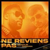 Ne reviens pas (Remix) de Gradur