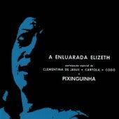 A Enluarada Elizeth by Elizeth Cardoso