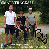 Small Tracks II de The B-Band