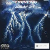 The Perfect Storm by Jordan Jnr