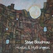 Hostas & Hydrangeas by Steve Boudreau