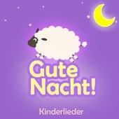 Gute Nacht (Schlaflieder, Babylieder Und Kinder Lieder Zum Mitsingen Und Einschlafen Als Kindermusik Auf Dem Klavier Und Piano) de Kinder Lieder
