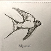 Skyward by Farsight