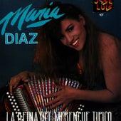 La Reina Del Merengue Tipico von Maria Diaz