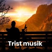 Trist musik - Triste kærlighedssange by Various Artists