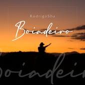 Boiadeiro de Rodrigo Sha
