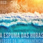 A Espuma das Horas (Versos da Impermanência) by Rico Ayade