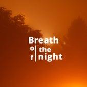 Breath of the night de Jp Beats