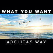 What You Want by Adelitas Way