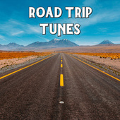 Road Trip Tunes von Various Artists