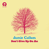 Don't Give Up On Me by Jamie Cullum