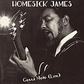 Gotta Move (Live) von Homesick James