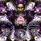 The Rezwalker (Space Cat vs Prastix Remix) de Transwave