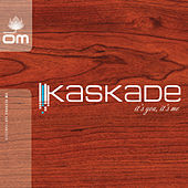 It's You, It's Me de Kaskade