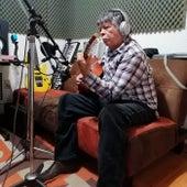 Sapo Cancionero (Version Acústica) by Misael