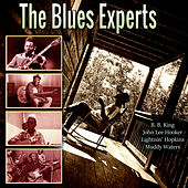 The Blues Experts de Various Artists